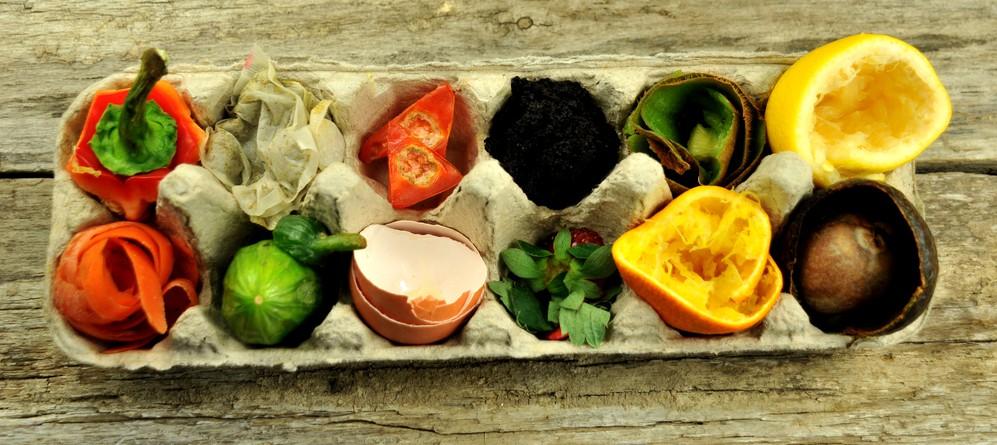 10 věcí, které jste nevěděli o plýtvání jídlem (a co stím můžete udělat vy)